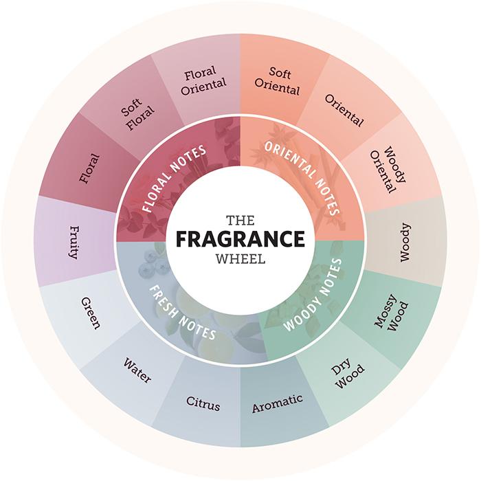 Fragrance là gì? Công dụng của Fragrance trong làm đẹp